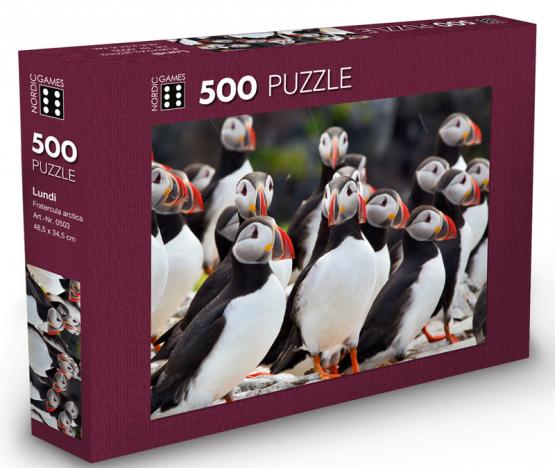 Puzzle_lundi_500_2