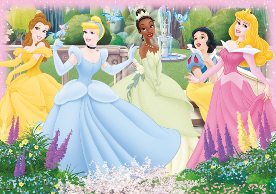 17143_Disney-Princess_2in1_3