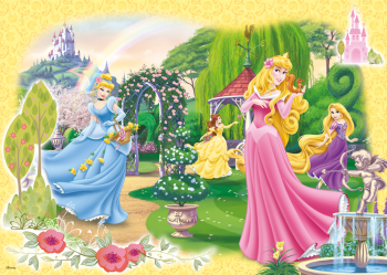 17193C_Disney-Princess_100_1
