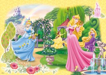 17193C_Disney-Princess_100_1