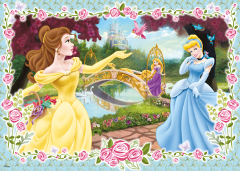 17193D_Disney-Princess_100_1