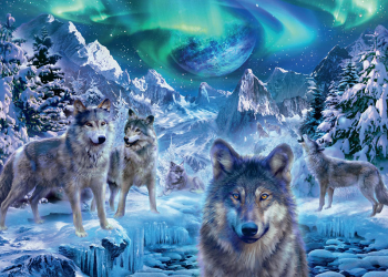 18329_Winter-Wolves-500-1