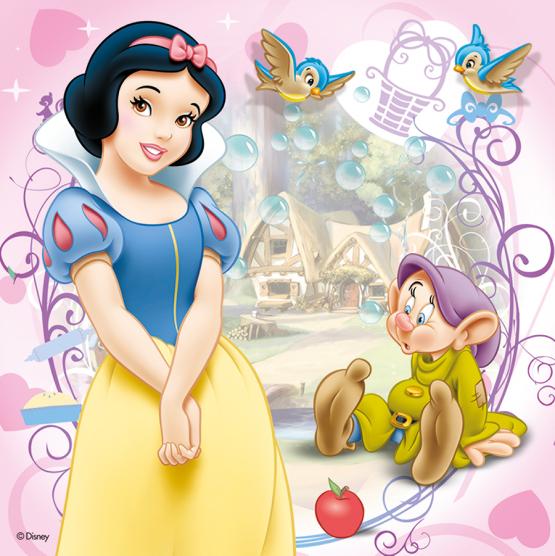 17061_Disney-Princess_4in1_4
